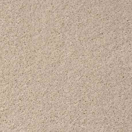 THE VEIW Texture PetProtect® Carpet - STAINMASTER®