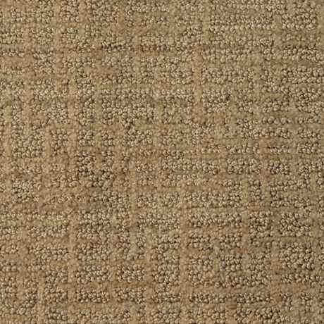 Lustrous Tan Pattern Active Family Carpet Stainmaster 174